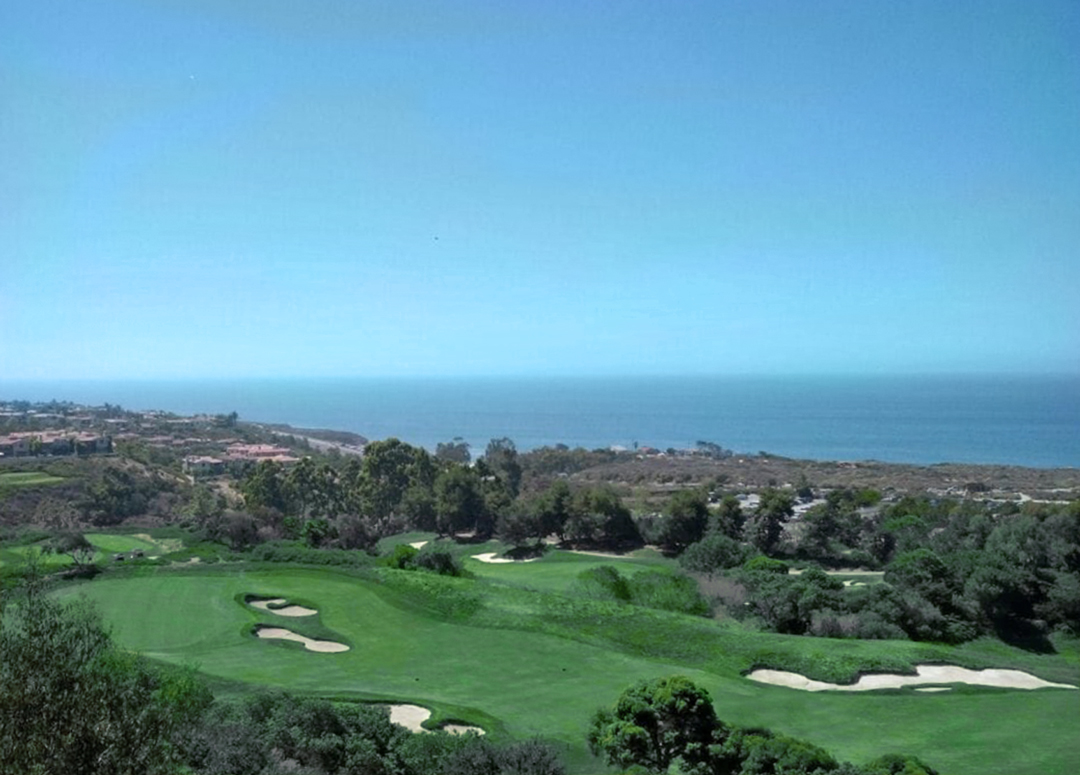 Dignitary Discretion is not affiliated with, licensed by, or endorsed by Pelican Hill, a trademarked property of the Irvine Company